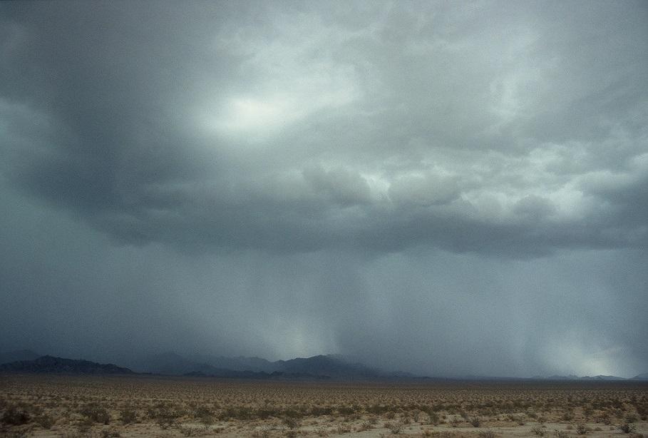 Дожди в пустыне