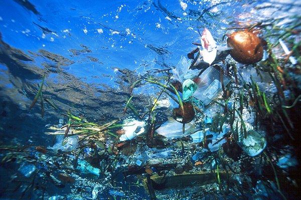 проблема загрязнения вод мирового океана
