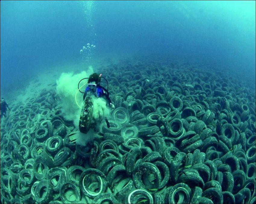 последствия загрязнения мирового океана