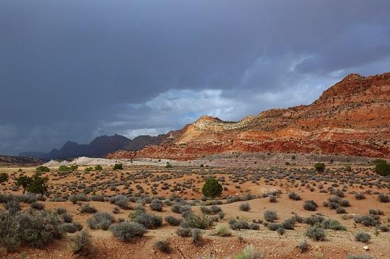 Проблема засухи пустыни