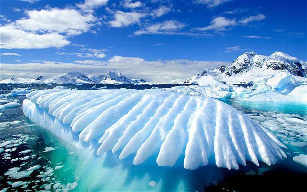 пример полярного пояса