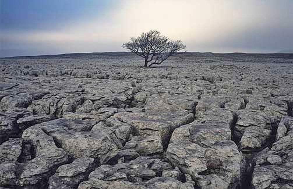 причины эрозии почв