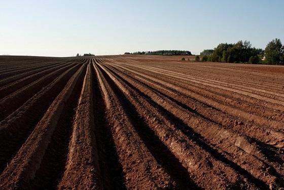Вспахивание почвы