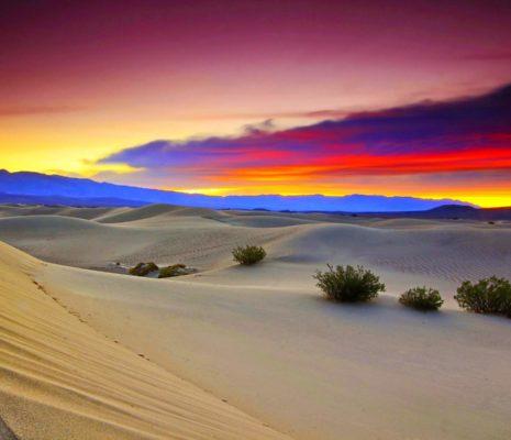Экологические проблемы пустынь