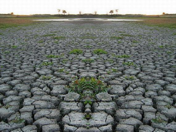 Засуха в пустынях
