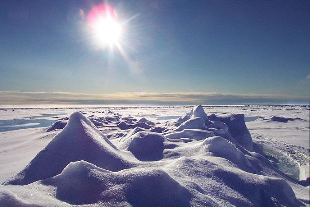 Проблемы Арктических пустынь