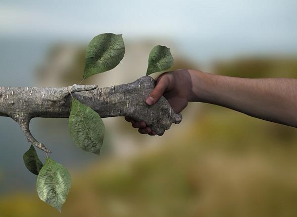 Дружить с природой