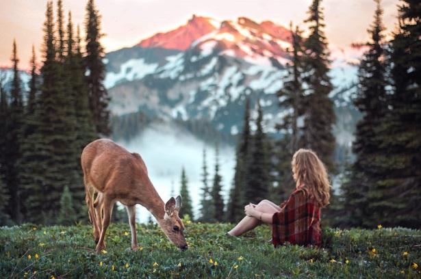 Гармония и природа