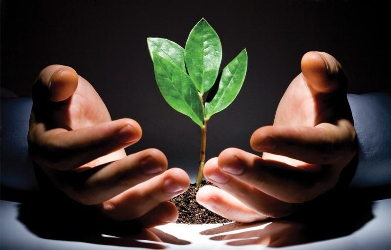 Проблемы экологического страхования
