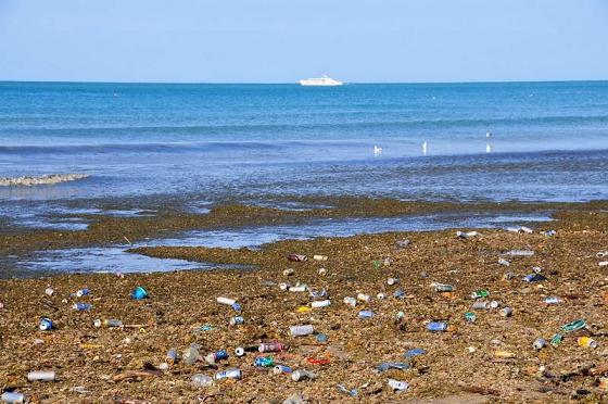 Загрязненное море