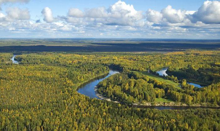 Сибирские равнины