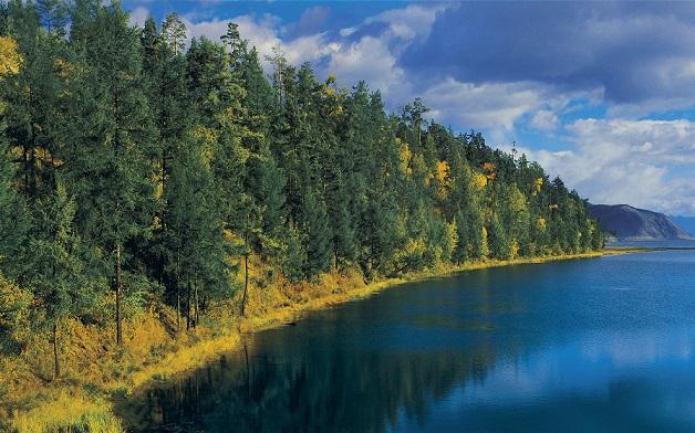 Природа в Сибире