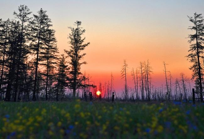 Природа в Якутии