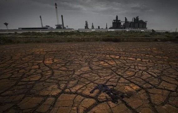 Антропогенное загрязнение среды