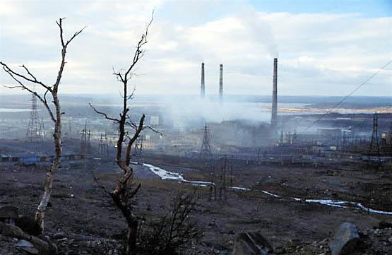 Атмосферное загрязнение лесов