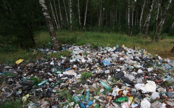 Загрязнение лесов мусором