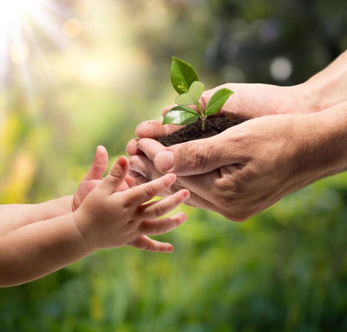 Растительность на руках что делать