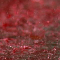 Кровавые дожди