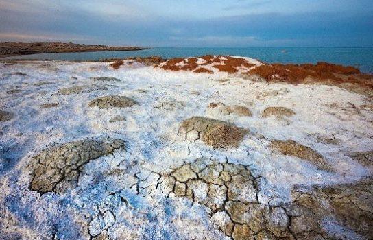 катастрофа Аральского моря