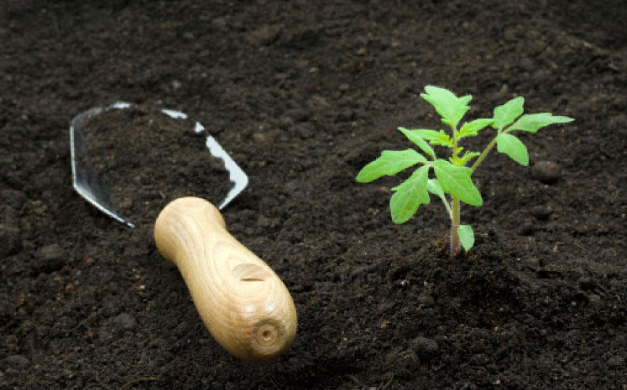 улучшение плодородия почв