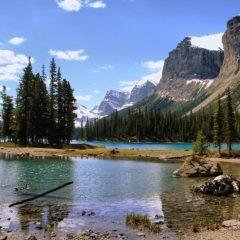 Какой климатический пояс отсутствует в Северной Америке