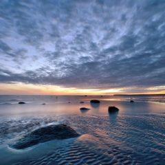 проблемы белого моря