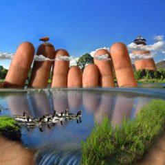 экология человека