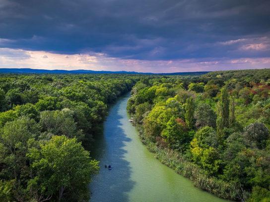 экваториальные леса Африки-фото 1