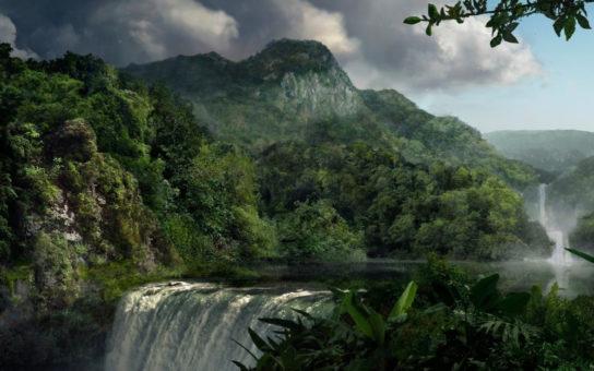 экваториальные леса Африки - фото 3