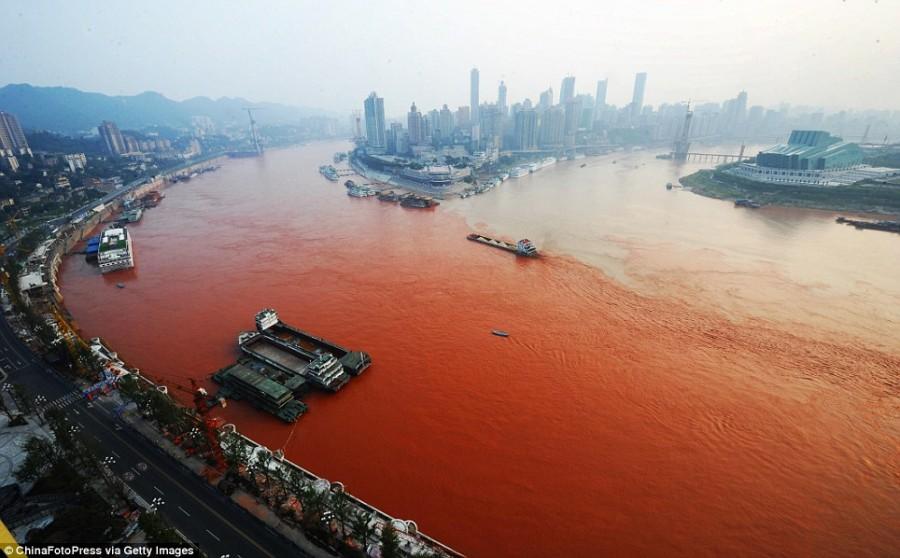 ecology-problem-of-china