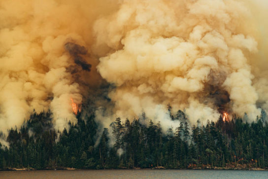 фото пожара лесов