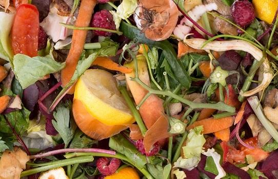 Пищевые отходы какой класс опасности