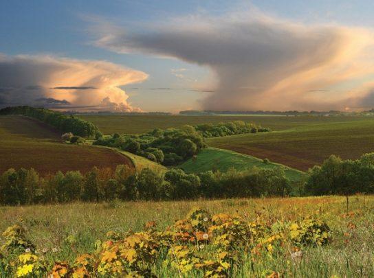 Степи и лесостепи – природа, зоны, особенности, характеристики, климат