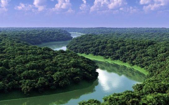 источники питания амазонки