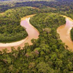 Амазонка - зависимость от климата