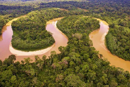 Как Амазонка зависит от климата