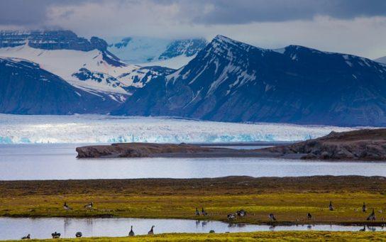 Континентальный климат полярных широт