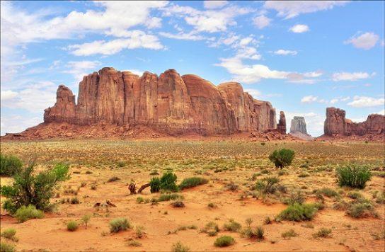 Пустыни и полупустыни Северной Америки