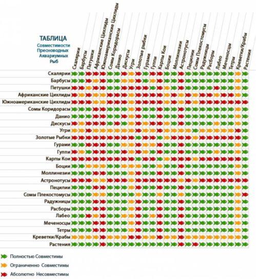 таблица совмещенности аквариумных рыб