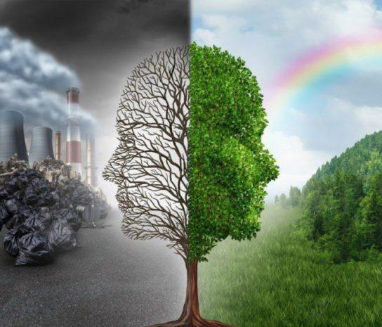 Опасности экологического кризиса
