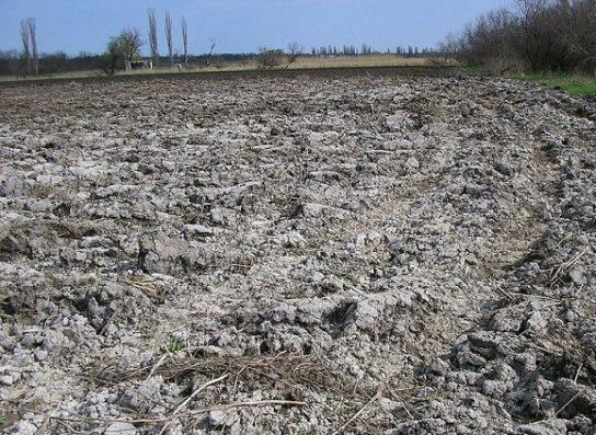 засоление почв